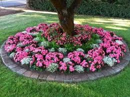 easy front yard landscaping resolve40 com