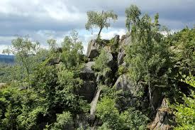 Bad Harzburg Burgberg Zu Den Harzer Luchsen An Der Rabenklippe Und Durchs Kalte Tal Bad