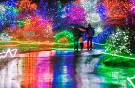 Zoo Lights Pictures by Zoolights U2013 News Tribune Photo