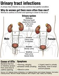 stop those utis infection is common among women mlive com