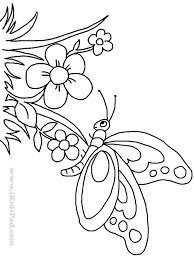 flowers butterflies coloring page free download