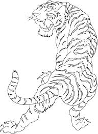 white tiger japanese pencil and in color white tiger