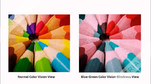 Red Green Color Blind Simulator Tritanopia A Color Blindness Disorder Youtube