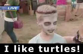 I Like Turtles Meme - i like turtles animals swinny net