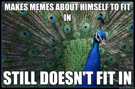 Peacock Meme - makes memes about himself to fit in still doesn t fit in