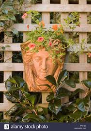 Face Planter Terracotta Wall Planter Of Woman U0027s Face With Orange Violas And