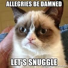 Snuggle Meme - images snuggle meme generator