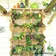 hang up your plants easy 2x4 plant shelf project plant shelves