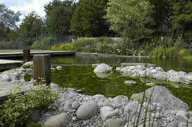 swimming pool natural swimming pond with beautiful view creative