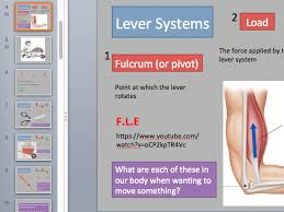 aqa a level pe newton u0027s laws and lever systems by 03thomsonc