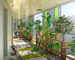 vegetable garden ideas for apartments interior design