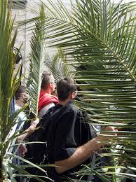 palms for palm sunday purchase clark traveler palm sunday in jerusalem