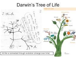 charles darwin charles darwin his journey so darwin