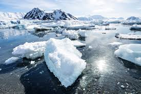 current climate ice age puny eco