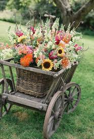 awesome looking flowers 25 best flower cart ideas on pinterest sunflowers sunflower