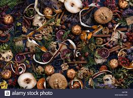 thanksgiving decorationbackground pastry spices and nuts on