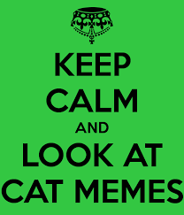 Keep Calm And Memes - keep calm and look at cat memes 1 by snow chainz on deviantart