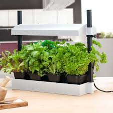 grow light indoor garden for herbs vegetables fruits and flowers