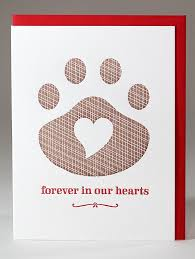 110 best loss of a pet cards images on pet sympathy