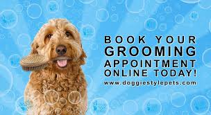 doggie style pets home facebook