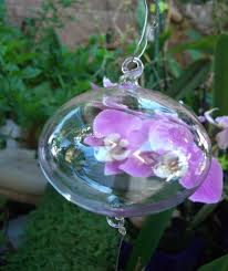six 80mm clear glass 3 balls with 2 hooks