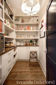 Kitchen With Pantry Design 15 Pantry Ideas And Kitchen Pantry Ideas Pantry And Kitchens