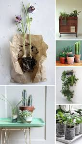 200 best 盆栽 plants images on pinterest plants gardening and