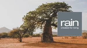 ingredient journeys baobab the tree of africa