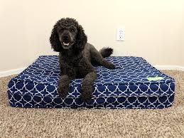 Tempur Pedic Dog Bed Eluxurysupply Dog Bed Review Sleepopolis