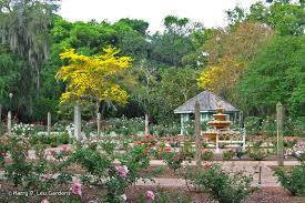 harry p leu gardens orlando flower garden in orlando