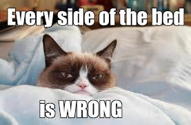Best Grumpy Cat Memes - every side of the bed is wrong funny grumpy cat meme picture