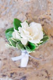 Wedding Boutonnieres Boutonnieres Photos White Flower Boutonniere With Green Leaves