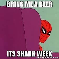 Spider Man Meme Generator - bring me a beer its shark week suspicious spiderman meme generator