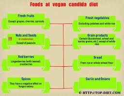 vegan candida diet food list 28 images 1000 images about lupus