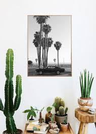 cactus home decor ocean avenue photography limited edition art print by kaitlin