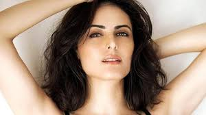 Top Controversies Of Former Bigg Boss Contestant Mandana - 7 facts we bet you didn t know about mandana karimi