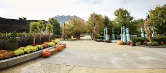 Family Garden - welcome to frederik meijer gardens u0026 sculpture park grand rapids