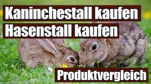 Kaufen Kaninchenstall Kaufen Bestseller Großer Vergleich 2017 Top 5