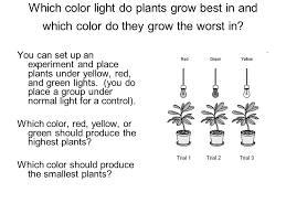 what color light do plants grow best in cell energetics omnivores dilemma excerpt what does this excerpt