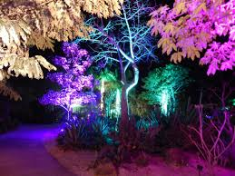 Naples Botanical Garden Price Botanical Gardens Lights Home Design Ideas And Pictures