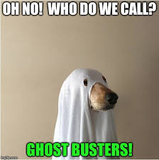 ghost doge imgflip