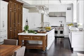 kitchen dining room wall cabinets homemade kitchen cabinets wolf