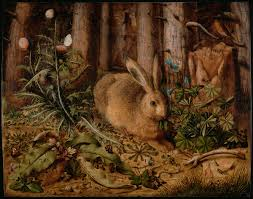 rabbits and hares in art wikipedia