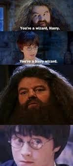 Harry Potter Meme - 100 harry potter memes that will always make you laugh