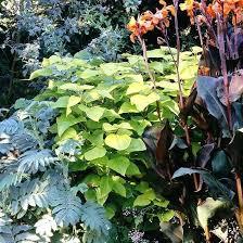 pacific northwest gardening u2013 exhort me