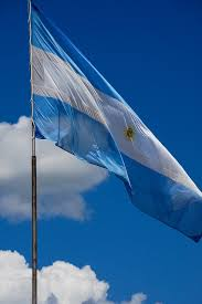 best 25 argentina flag ideas on pinterest history of argentina