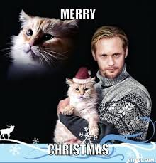 Cat Christmas Meme - meme monday vire eric with a cat in a christmas hat the