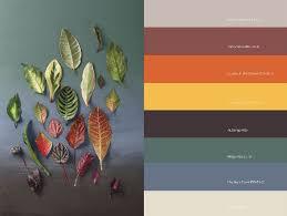 35 best colours images on pinterest plascon colours colour