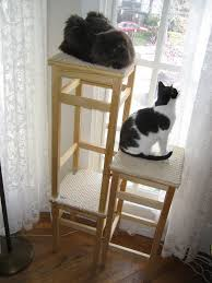 ikea furniture hacks for cats turn ikea doll beds into adorable