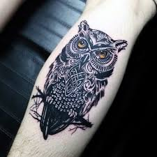 tattoo pictures of owls 30 celtic owl tattoo designs for men knot ink ideas